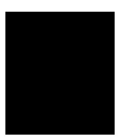 Arjen van Veelen